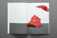 66_der-rote-vorhangoletruderung8.jpg